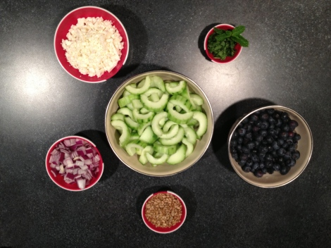 All the fun and colorful ingredients to make Kat's version of Wegmans Cucumber and Blueberry Salad.