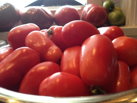 Fresh tomatoes from the garden, washed and dried.