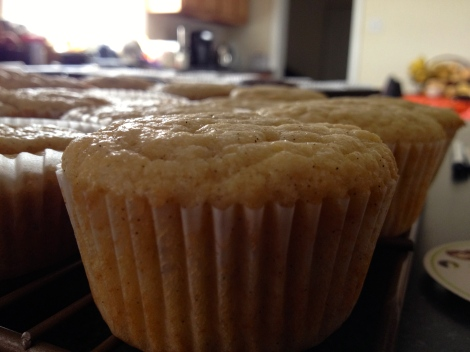Cupcakes straight out of the oven.