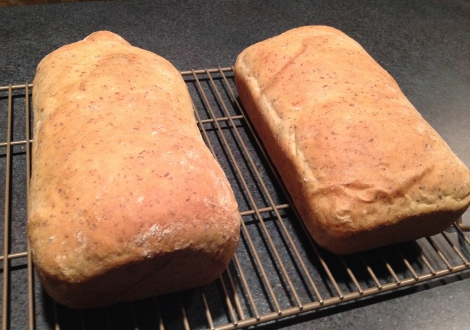 "My two finished loaves, the one on the right is my ""plain"" loaf while the one on the left has flax seeds, sunflower seeds and chia seeds folded in."